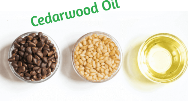 Using Cedarwood Oil To Treat Acne – What You Need To Know