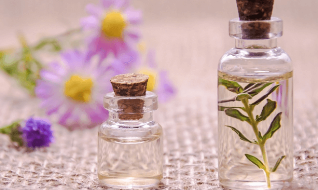 Best Essential Oils for Pimples and Blackheads